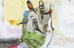cuentos para regalar a seños pájaros en la cabeza